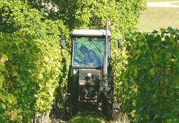 Agent d'exploitation viticole (H/F)